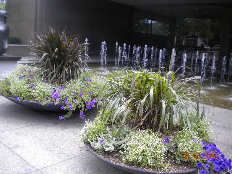 Planters with fountain 8.18